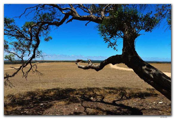 AU0995.Murphy's Haystacks