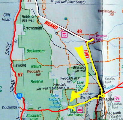 Tag 347: Western Flora - Lake Indoon