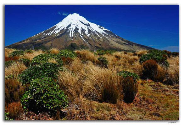 NZ0374.Egmont N.P.Mt.Taranaki