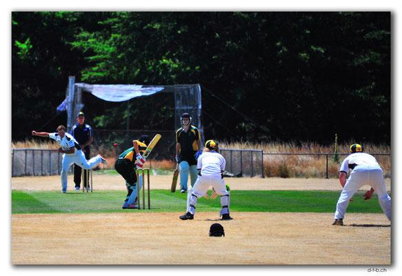 NZ0717.Scargil Domain.Cricket