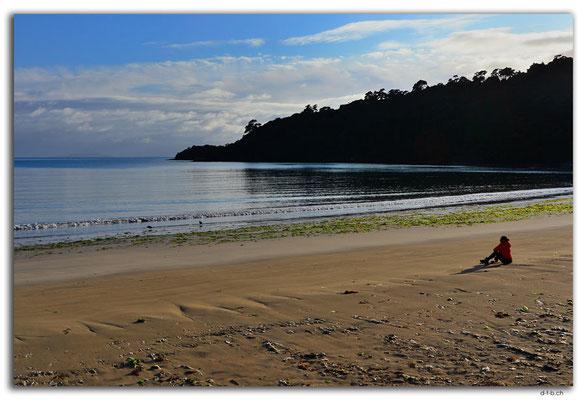 NZ0869.Stewart Island.Rakiura Track.Maori Beach