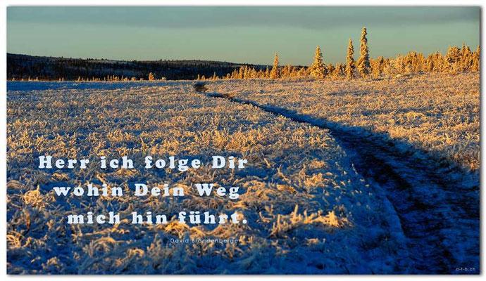 S0232.Lapland Wilderness.Kiruna.SE