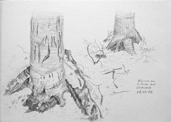 010.Skizze, Bäume im Schnee bei Ushuaia /Argentinien