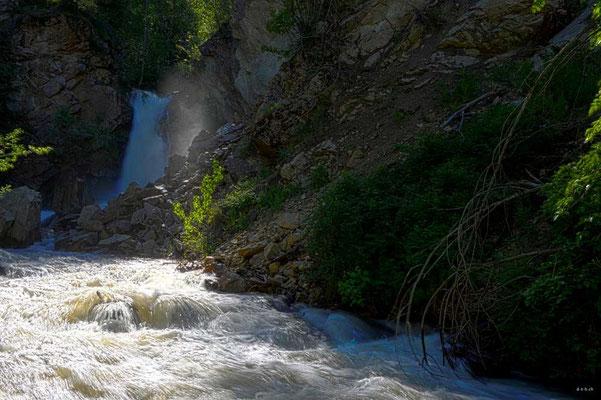 CA0221 Hardy Falls