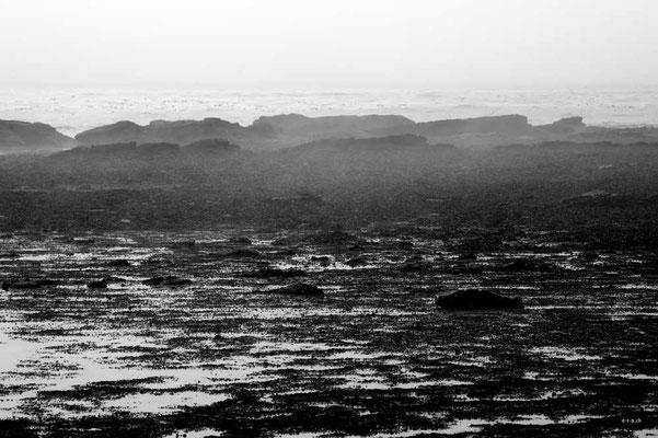 CA0111 WCT Nebelküste