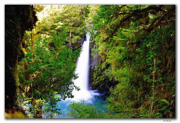 NZ0649.Nelson Lakes N.P.Travers Falls