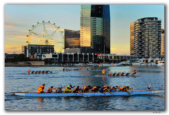 AU1247.Melbourne.Docklands.Dragonboats