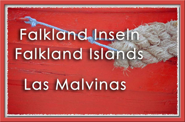 Fotogalerie Falkland Inseln / Photogallery Falkland Islands