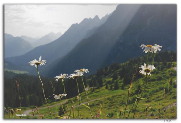 GW0130. Grosse Scheidegg