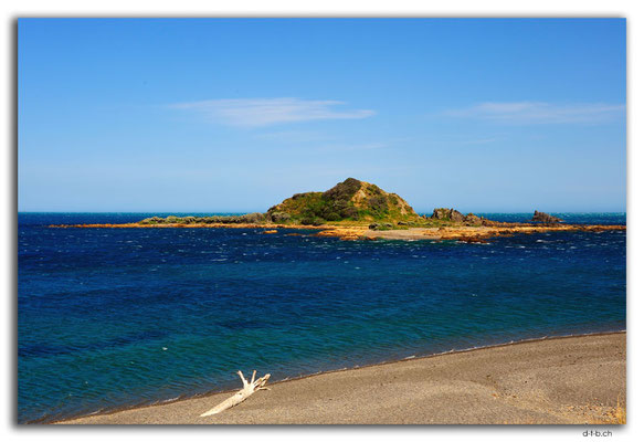 NZ0451.Wellington.Taputeranga Island
