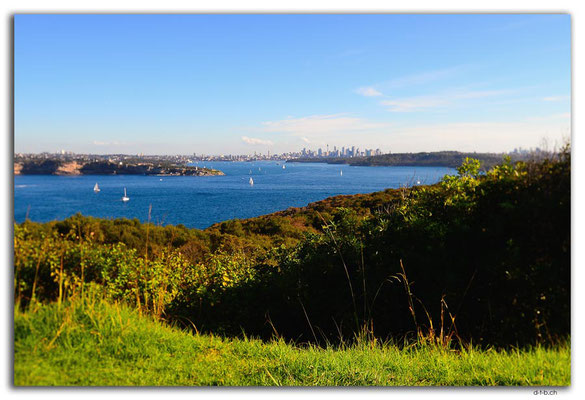 AU1540.Sydney.Fairfax Lookout