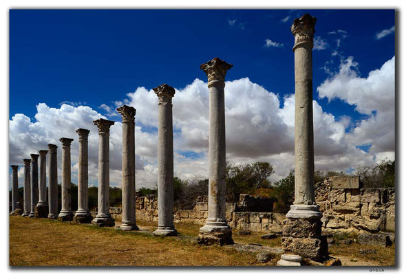 TR0571.Salamis.Columned Courtyard