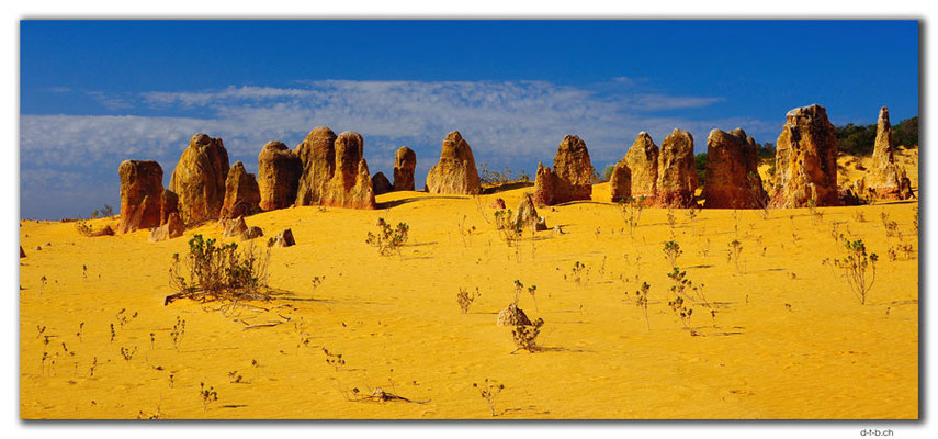 AU0592.Nambung N.P.Pinnacles