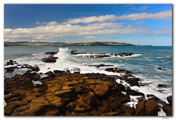 NZ0914.Curio Bay,Wave