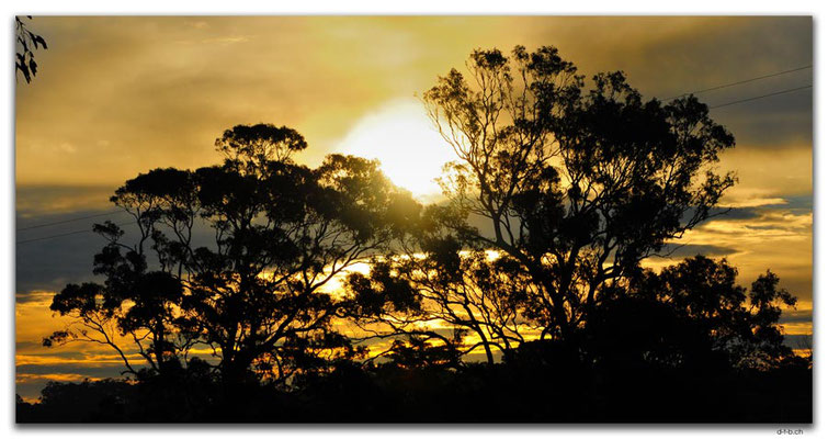 AU1459.Nicholson.Sunset