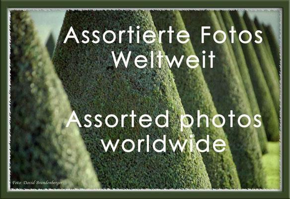 Fotogalerie Assortierte Fotos Weltweit / Photogallery Assorted Photos worldwide
