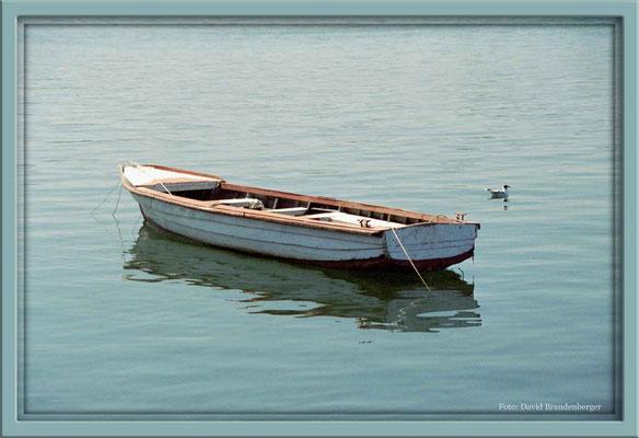 159.Boot,Valdivia,Chile