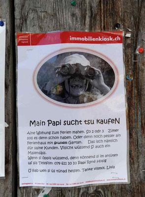 Schweiz.Fanas2