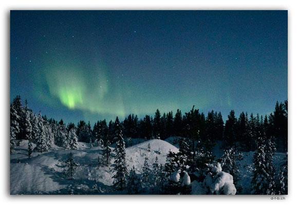 SE0114.Nordlicht