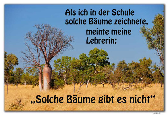 T045.Boab-Baum.AU.