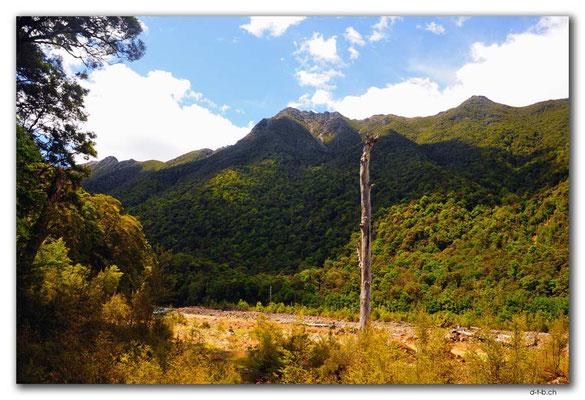 NZ0579.Anatoki Track.Stanley River