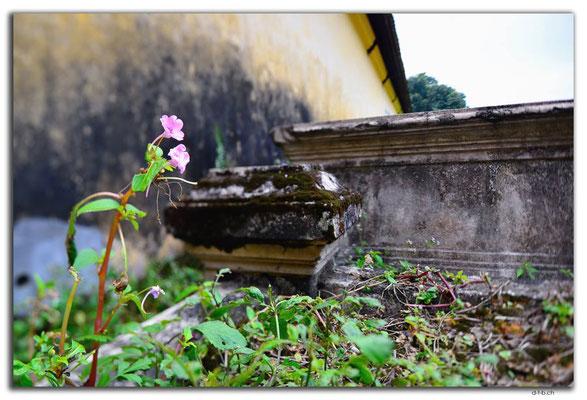 VN0156.Hue.Citadel.Halls of Mandarin
