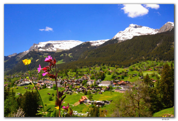 GW0107.Grindelwald