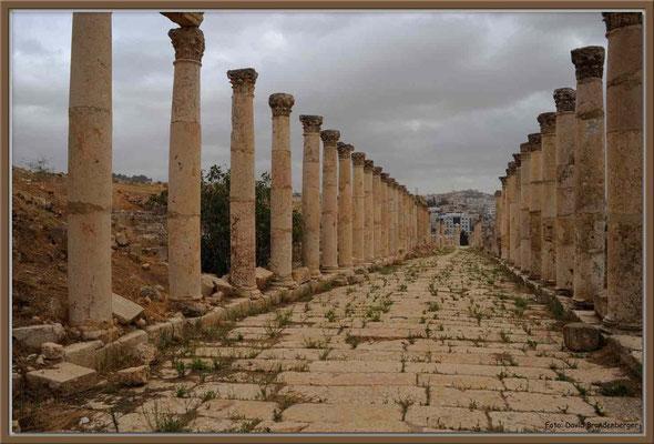 JO072.Südl.Decumanus.Jerash