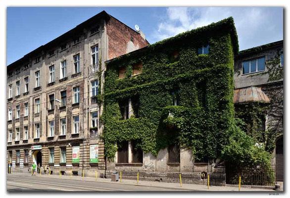 PL128.Lodz.eingewachsenes Haus