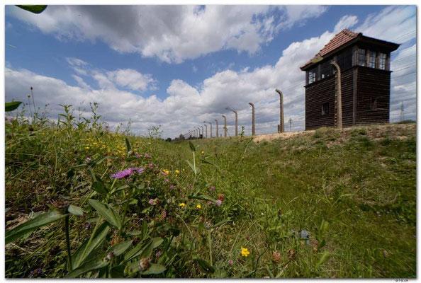 PL028.Birkenau.Wachturm