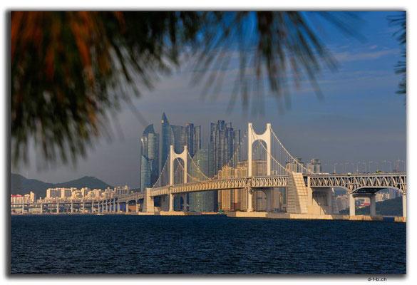 KR0183.Busan.Gwangandaegyo Bridge