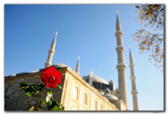 TR0033.Edirne.Selimiye Camii