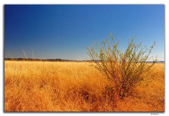 AU00151.Pinkerton Range