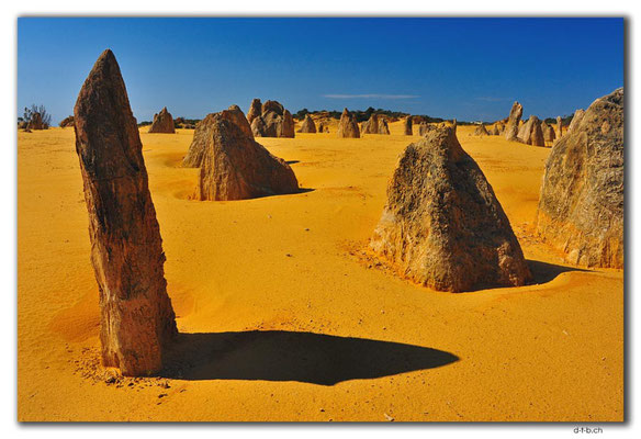AU0589.Nambung N.P.Pinnacles