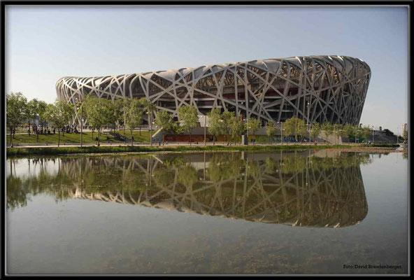 C0096Vogelnest,Peking
