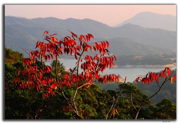HK0034.Tai Lam Chung Reservoir