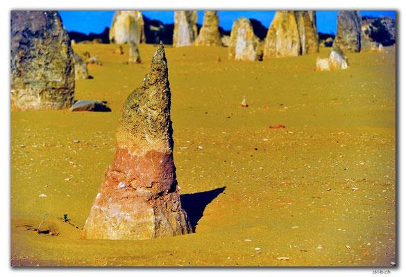 AU0594.Nambung N.P.Pinnacles