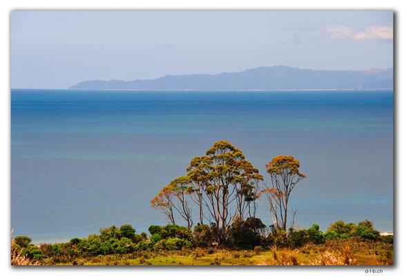 NZ0601.Milnthorpe Park.Leslie's Lookout.Golden Bay