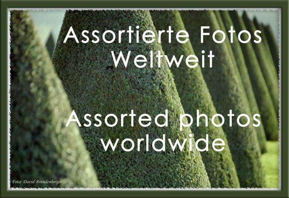 Fotogalerie Assortierte Fotos Weltweit / Photogallery Assorted Photos worldwide
