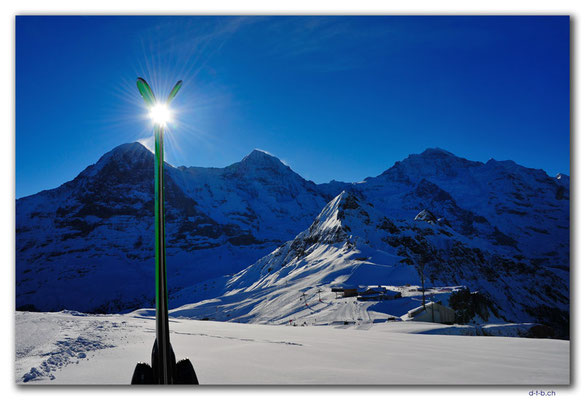 GW0039.Eiger, Mönch und Jungfrau mit Ski