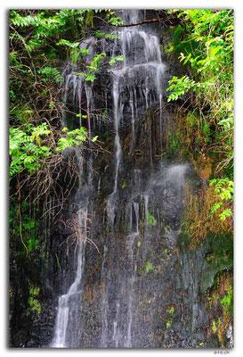 NZ0352.Madonna Falls