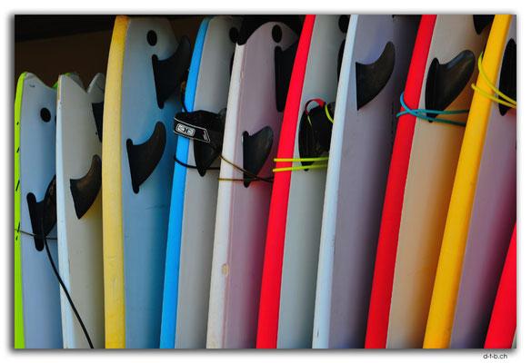 AU1693.Sydney.Palm Beach.Sufboards