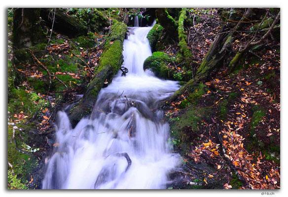 AU1403.Overland Track.Kleiner Wasserfall