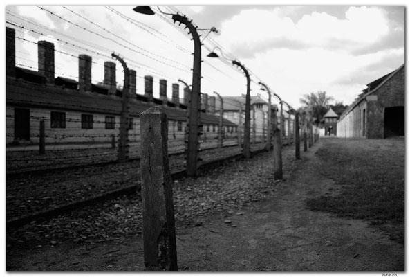 PL005.Auschwitz.Todeszaun