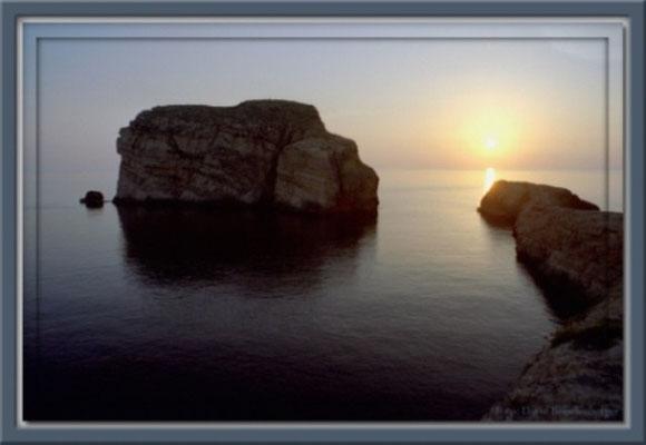 A0070 Fungus Rock,Malta