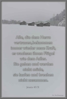 S0122.Bosca.Klosters.CH