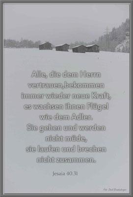 S0122.Bosca.Klosters.CH.Jesaja 40.31