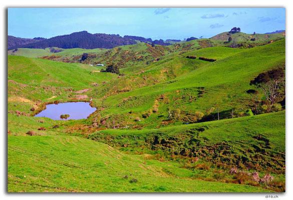 NZ0264.Bombay Hills