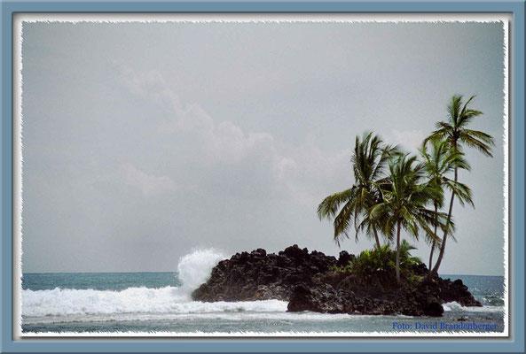 109.Karibikinsel,Bocas del Toro,Panama