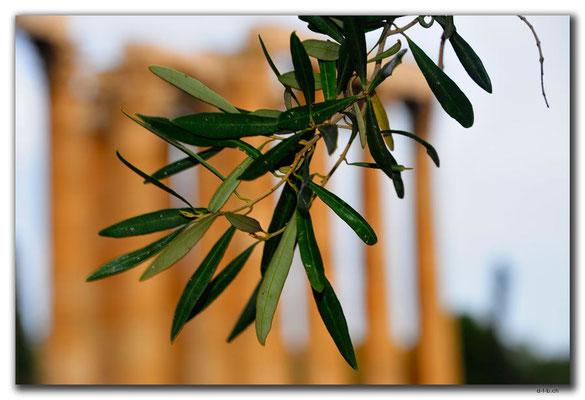 GR0405.Athen.Zeustempel